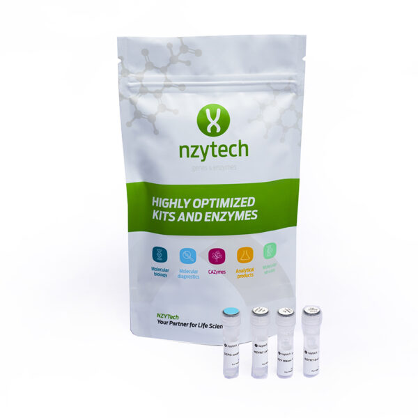 First-Strand cDNA Synthesis Kit