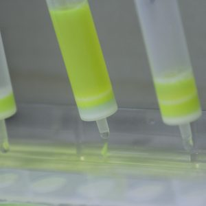 recombinant protein purification